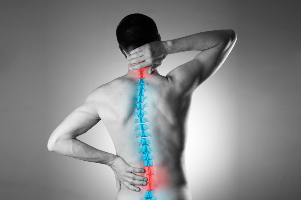 Activator Adjusting Chiropractor in Lake Stevens
